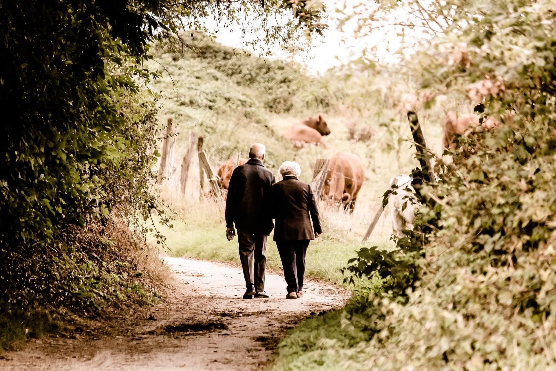 dolor general personas mayores o inactivas