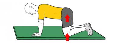ejercicios suelo pelvico 8
